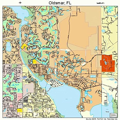 Oldsmar Florida Map.Amazon Com Large Street Road Map Of Oldsmar Florida Fl Printed