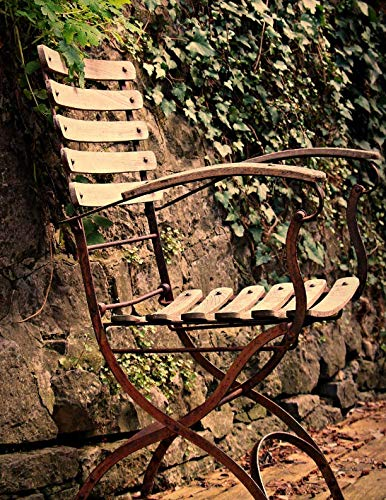 Notebook: Chair seating furniture outdoor out ivy fern garden design gardening outdoor relaxing relax peace ()