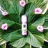 Donkey Milk Face Cream with Vitamin B3- REDUCE PORE SIZE - CONTROL OIL - MINIMIZE FINE LINES