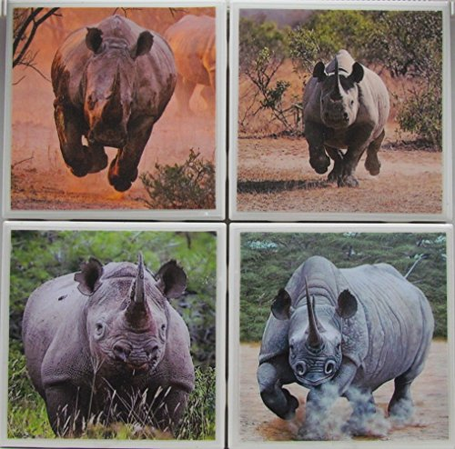 Personalized Coasters - Rhinos - Set of 4-4
