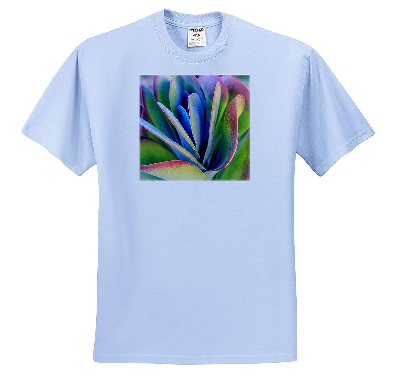 Natural Patterns Close-up of Succulent Plants California 3dRose Danita Delimont ts/_314718 USA - Adult T-Shirt XL