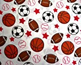 Kids Collection Sports Balls Twin Sheet Set 100% Soft Polyester