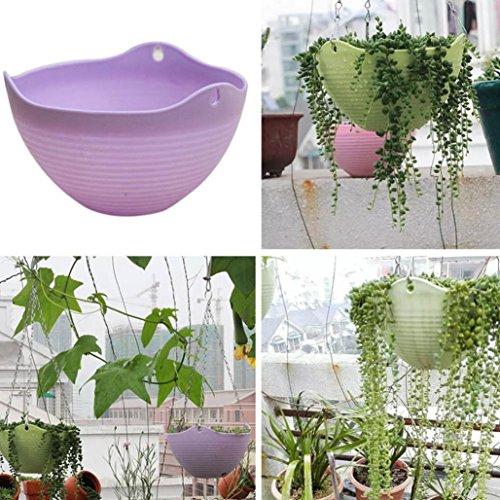 Strainer Pot Body (Plastic Wall Hanging Storage Basket,Hanging Flower Plant Planter Basket for Plants Pot Holder with Chain ,Tuscom (Purple))