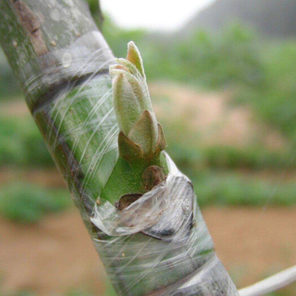 Cinta especial para injertos y jardineria. auto-adhesiva, impermeable y biodegradable. envuelva la rama de una planta en otra planta creceran como una OPEN BUY
