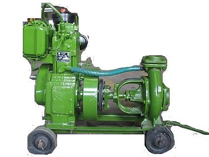 Ptc Diesel Engine Pump Set 5 Hp Regular Amazonin Garden