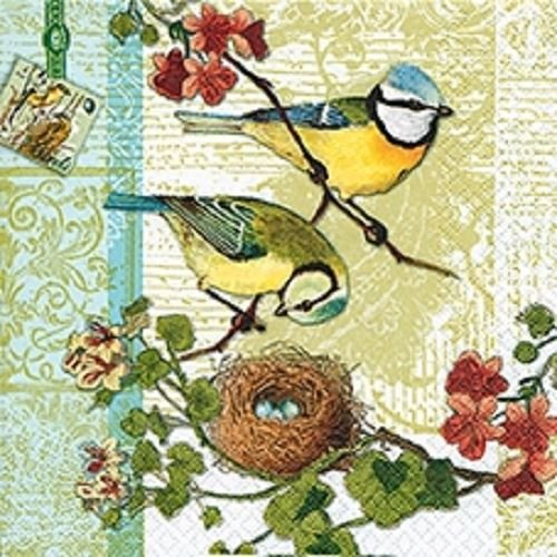 4 x Paper Napkins - Bird Family - Ideal for Decoupage / Napkin Art CraftyThings