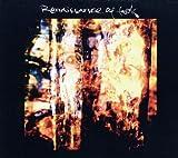 Renaissance Of Fools