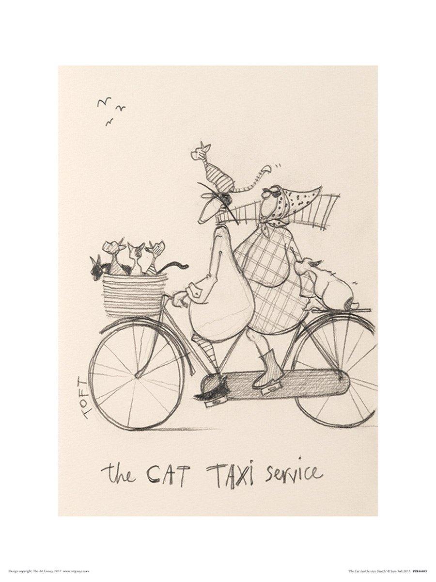 Paper 30 x 40 x 1.3 cm Art Group The The Cat Taxi Service Sketch Sam Toft Art Print Multi-Colour