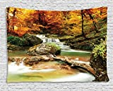 Ambesonne Natural Waterfall Decor Collection, Autumn Creek Woods Trees Foliage Rocks In Forest, Bedroom Living Room Dorm Wall Hanging Tapestry, 80W X 60L Inch