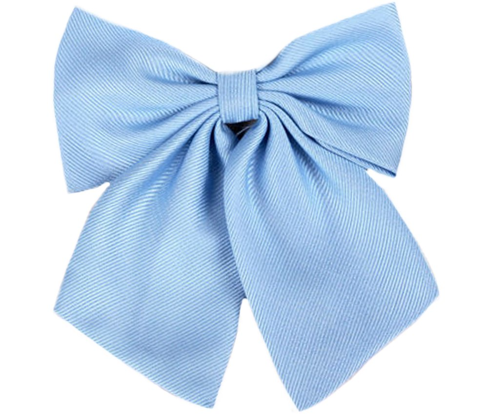 Flairs New York Women Handmade Pre-Tied Bowknot Bow Tie (Baby Blue [Stripes Texture]) by Flairs New York (Image #1)