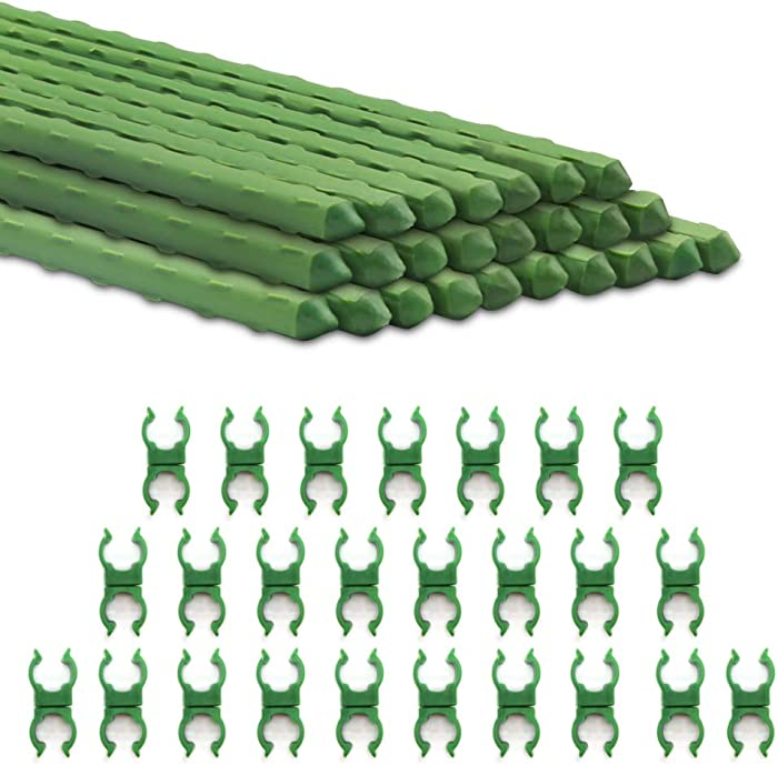 AmazeFan 4ft Tomato Plant Stakes, Garden Stakes Metal and Support, Plastic Coated Steel for Tomato, Bean, Cucumber, Strawberry, Flower, Tree, with 10 Stake Buckles (25 Pack)