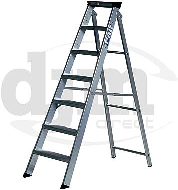 Youngman 10 escalera clase 1 aleación de escalera aluminio Tradex Tools Ltd Special: Amazon.es: Bricolaje y herramientas