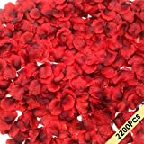 CODE FLORIST 2200 PCS Dark-Red Silk Rose Petals Wedding Flower Decoration, 2 Inch Black