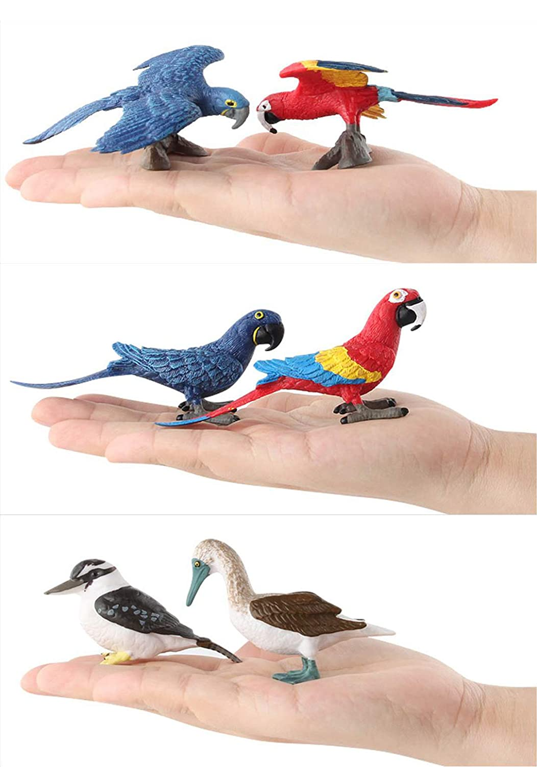HiPlay Bird Toy Figures 6 Packs Set-Realistic Design with Amazing Detail Hand-Painted Lifelike Aves Models for Kids//Collectors HP-D019
