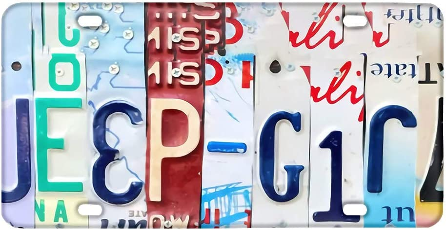 Add Your Own Pictures Text Logo Art Design Metal Aluminum Decorative Auto License Plates FUIBENG Customized License Plater Personalized Auto Front Decor