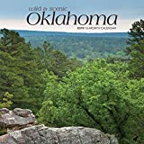 Oklahoma, Wild & Scenic 2019 7 x 7 Inch Monthly Mini Wall Calendar, USA United States of America Southwest State Nature