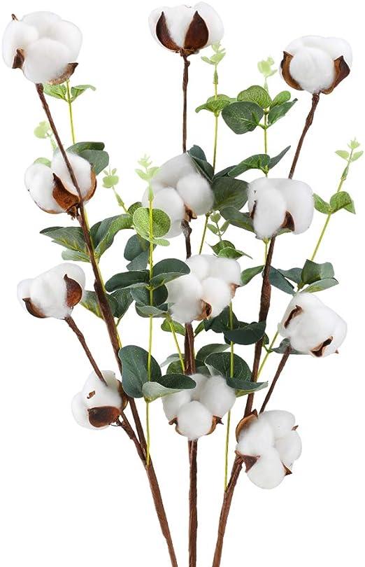 HUAESIN 3Pcs Flores Artificiales Algodon Seco Rama Algodon Natural Blanco con Hoja Eucalipto Verde Arbusto Flores Secas para Ramos Jarrones Boda Mesa Hogar Dormitorio Balcon Cocina Maceta Puerta: Amazon.es: Hogar