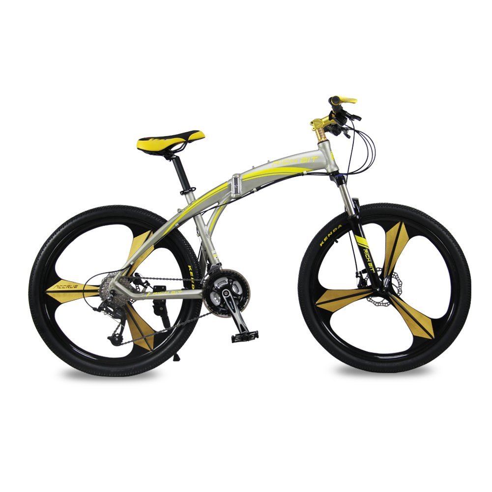 Rich Bit New 601 Folding Mountain Bike