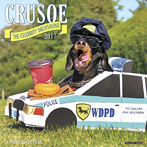 Crusoe the Celebrity Dachshund 2017 Wall -