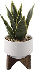 Flora Bunda Large 10