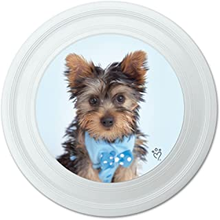 Graphique et Plus Yorkshire Terrier Chiot Nœud Papillon Bleu Fantaisie 22,9 cm Flying Disc 9 cm Flying Disc Graphics and More