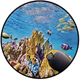 Printing Round Rug,Ocean,Tropical Exotic Coral Reefs Fish School Jellyfish Underwater Wild Marine Life Theme Mat Non-Slip Soft Entrance Mat Door Floor Rug Area Rug For Chair Living Room,Multicolor