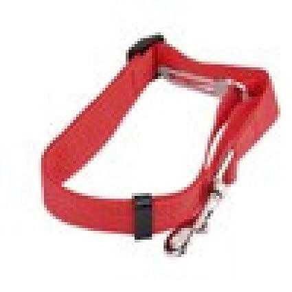 TAOtTAO - Arnés para Cinturón de Seguridad de Coche con Clip para ...