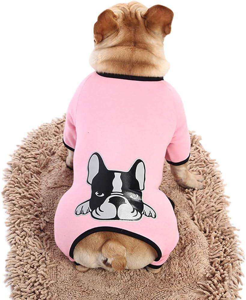 Geilisungren Ropa para Mascotas Perros pequeños 2019, Verano Camiseta Chaleco para Mascotas Ropa returom Abrigo Disfraces Traje Perrito Camiseta del Animal Elásticos y Transpirables Impresión Pulóver: Amazon.es: Ropa y accesorios