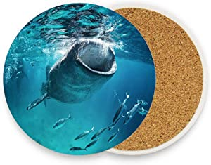 Huayuanhurug Diving Blue Cebu Whale Shark Eating Fish Wildlife Nature Giant Mouth Open Tropical Coaster Absorben Stone Ceramic Coaster for Drinks Cork Base Backing Suitable