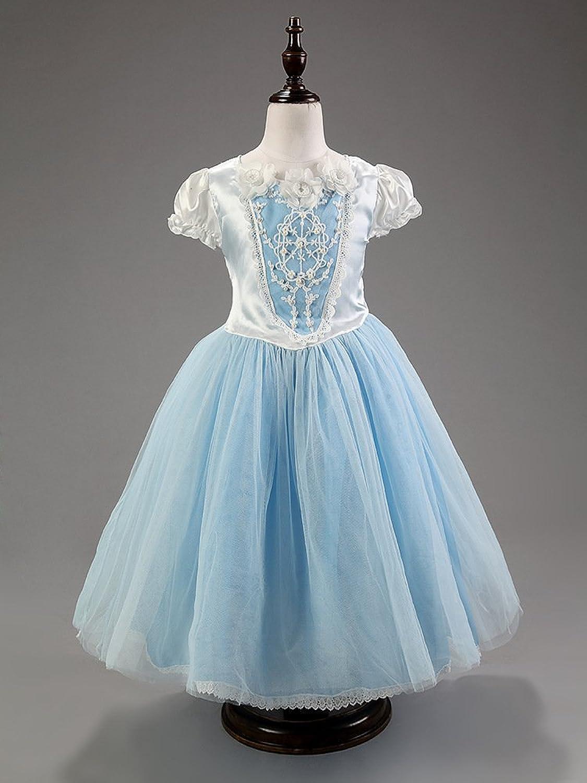 Amazon.com: Cohaco Girl\'s Princess Cinderella Costume Light Blue ...