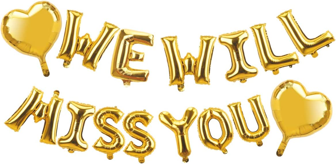 Farewell Party Decorations Supplies - We Will Miss You Balloon Banner Decorations Kit - Going Away Party Decorations - Goodbye Retirement Party Office Work Party Farewell Party Graduation Decorations