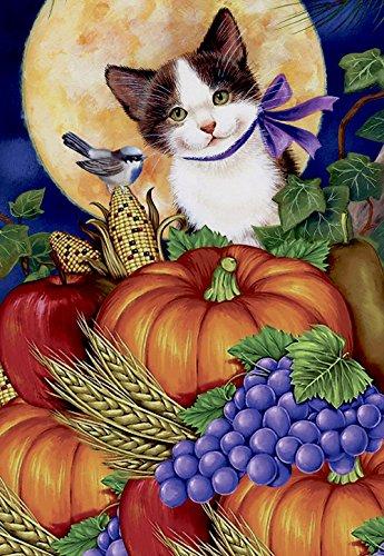 Morigins Fall Harvest Moon Cat Double Sided House Flag Decor