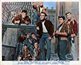 WEST SIDE STORY ORIGINAL BRITISH LOBBY CARD RICHARD BEYMER GANG