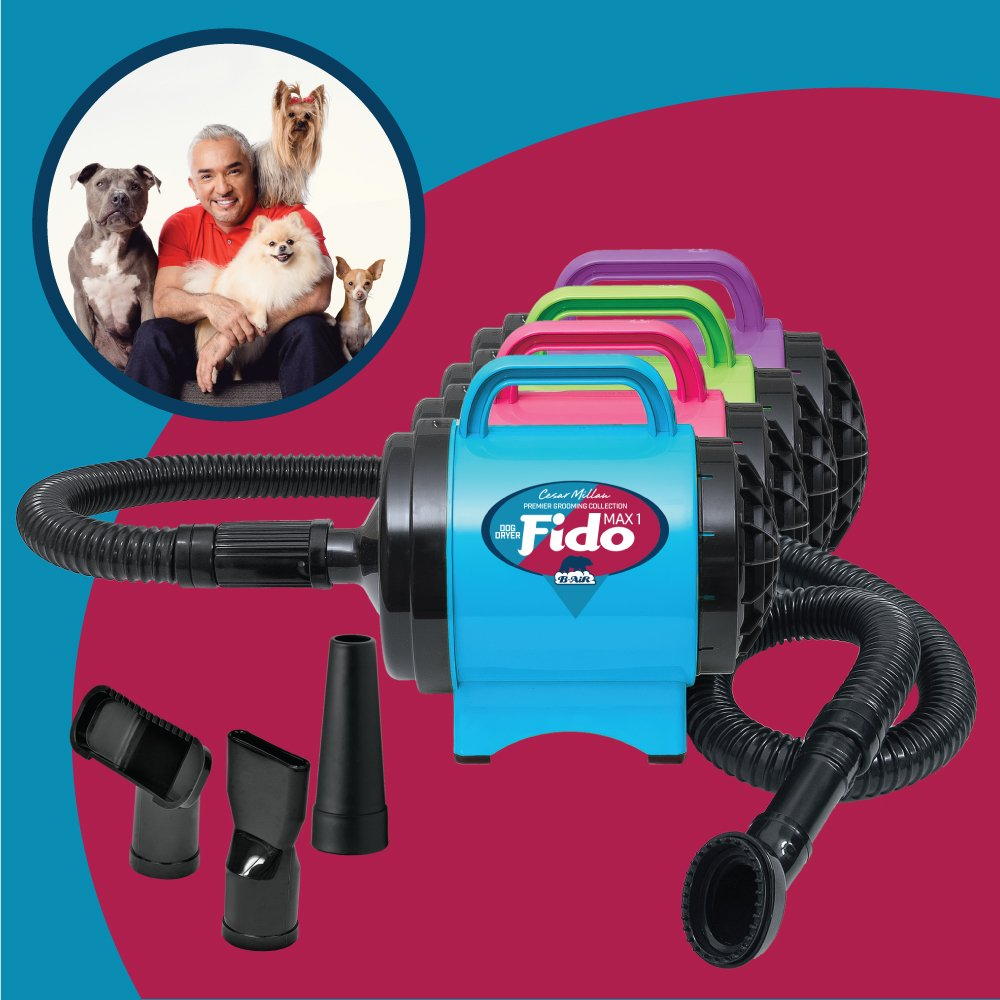B-Air BA-FM-1-PR Fido Max 1 Dog Dryer Premier Grooming Collection, Purple Ribbon Pack by B-Air (Image #2)