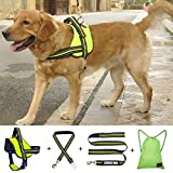 Exkouci Dog Harness, No Pull Large Dog Pet Harness Leash, Car Seat Belt Backpack, Body Padded Adjustable Vest Harness Large Dog Walking Training, Chest Girth 25-31 inch, Green/M Review