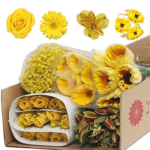 Monochromatic Yellow Flowers (Gerberas, Roses, Alstroemeria and Babys Breath) by Vistaflor Fresh Flowers