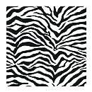 York Wallcoverings Just Kids KD1798 Zebra Skin Wallpaper, Black