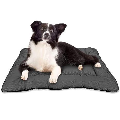 Amazon.com: AIPERRO - Cama para perro, acolchada, lavable ...