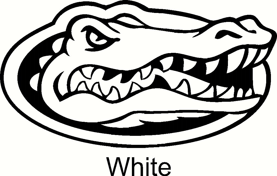 Amazon Com Florida Gators Logo Car Window Vinyl Decal Sticker 6