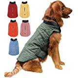 EMUST Winter Dog Coats, Dog Apparel for Cold Weather, British Style Windproof Warm Dog Jacket for Small Dog Coats for Winter,