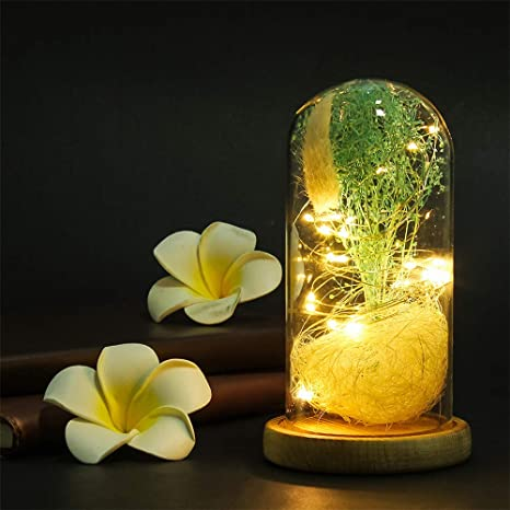 Samlike Gypsophila Lampe Led Rose Lumière Eternal Avec Fleur RAL4j5