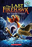 #10: The Crystal Caverns: A Branches Book (The Last Firehawk #2)