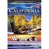 California: Coastal Wildlife & Waterfalls / Waves: Virtual Vacations