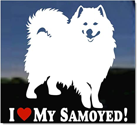 "I LOVE MY SAMOYED 8/"" AS1348 car sticker decal ThatLilCabin"