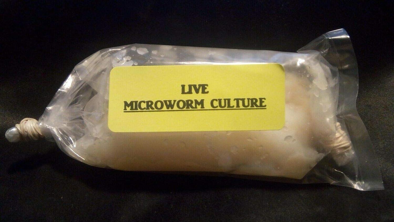4 OZ Live Microworm Culture Panagrellus Redivivus Fry Food Guppy Betta Barb - B2G1