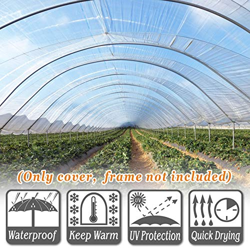 Strong Camel Plastic Greenhouse Cover 6mil Thicker Polyethylene Covering 12ft X 25ft by Strong Camel (Image #2)