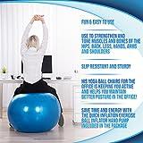 Medicine Exercise Balance Ball Chair - Physio Swiss