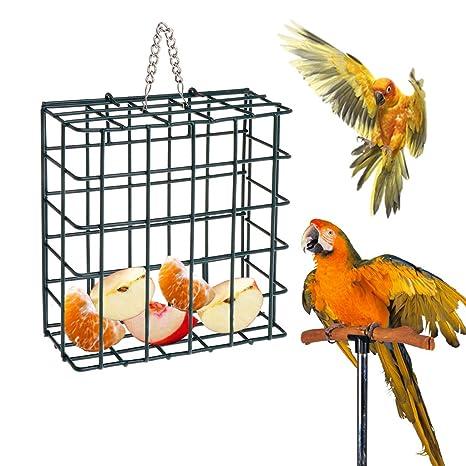 Manyo Comedero para Pájaros, Contenedor De Alimentos con Forma De ...