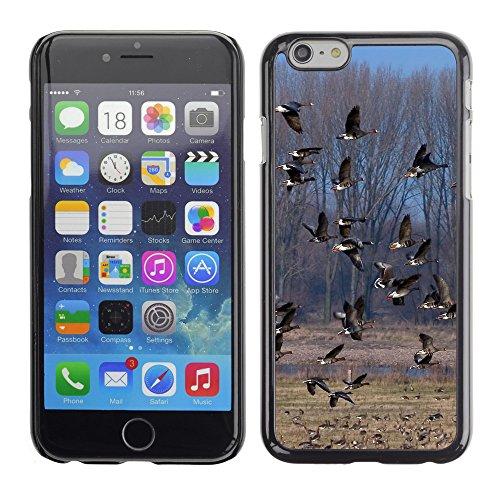 """Premio Sottile Slim Cassa Custodia Case Cover Shell // V00003299 troupeau de canards sauvages // Apple iPhone 6 6S 6G PLUS 5.5"""""""