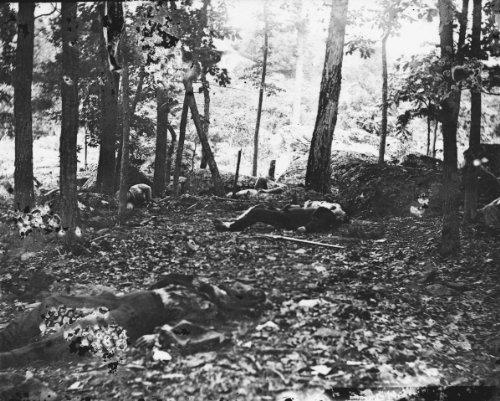 - New 11x14 Photo: Foot Little Round Top, Gettysburg